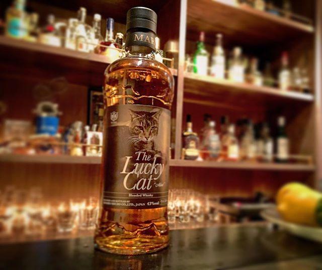 """【new arrival japanese blended malt】Lucky cat """"mint""""#bar #authenticbar #bartool #blendedwhisky #blended #japanesewhisky #marswhisky #homboshuzo #malt #whisky #ウイスキー #マルスウイスキー #本坊酒造 #ラッキーキャット #ブレンデッド #ブレンデッドウイスキー #ジャパニーズウイスキー #バーツール #行徳 #行徳bar #浦安 #船橋"""