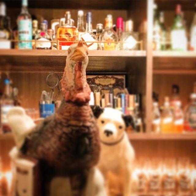 【thank you for comin' 2017!goodbye year of the cock】12/30を以ちまして2017の営業は終了致しました。この1年、お越しいただいた皆様に心より感謝の意を申し上げます。ありがとうございました。開店より早5年。今後ともよろしくお願い申し上げます。BAR TooL#bartool #bar #authenticbar #yearofthecock #バーツール #行徳 #行徳BAR #浦安 #船橋 #今年も一年お疲れ様でした #さよなら酉年 #酉年